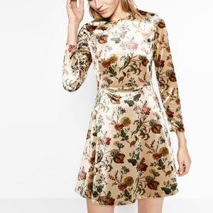 👗NWOT Zara Printed Velour Dress
